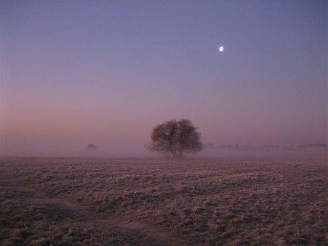 News - 2012 Moor dawn Jan 12 (6)