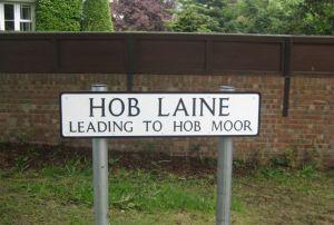 News - Hob Laine