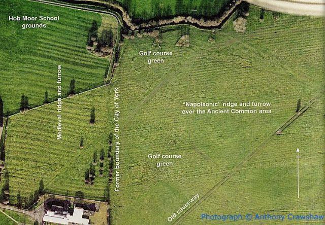 Ridge & Furrow - Aerial