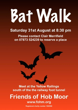 FOHM bat walk 310819