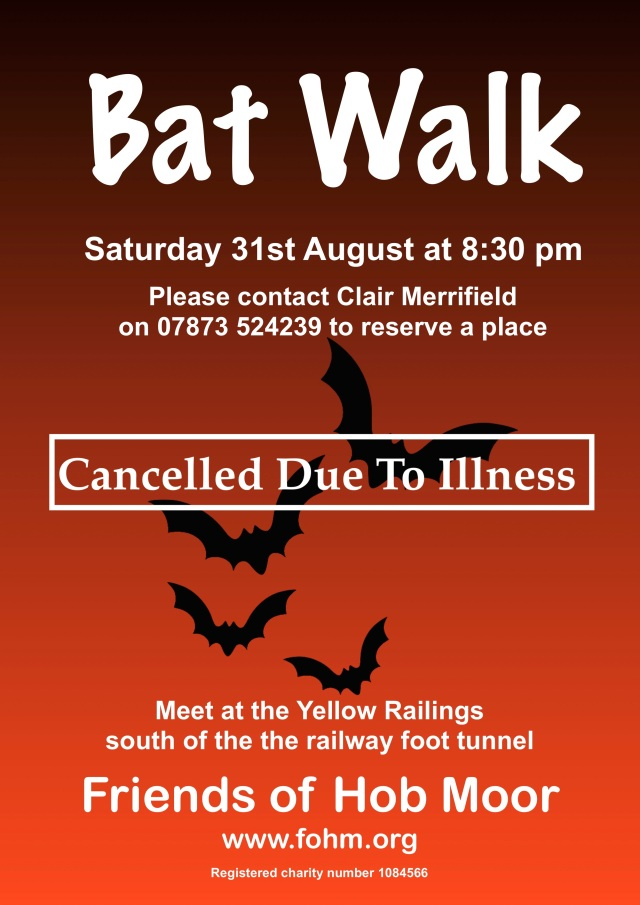 FOHM bat walk 310819cancelled